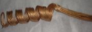 Сухоцвет Завиток малый (10шт) 60см золото
